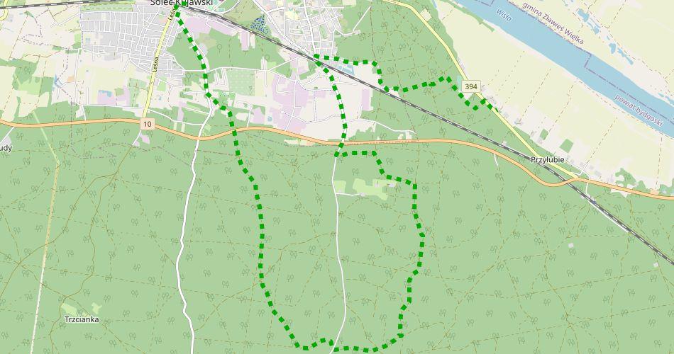 Mapa trasySolec Kujawski – Przyłubie (im. T. Dolczewskiego, pieszy, zielony)